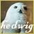 Harry Potter: Hedwig: